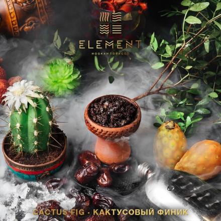 Табак Element Earth Cactus - Fig 100 грамм ( кактусовый финик)