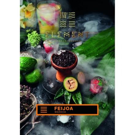 Табак Element Earth Feijoa 100 грамм (фейхоа)